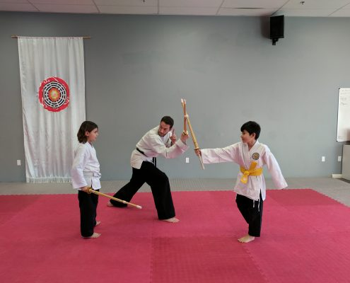 Meet Pa Kua Martial Arts at the Summer Fun & Camp Fair on March 12th.